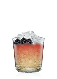 absolut ruby bramble cocktail