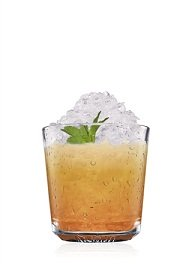 southern ginger cocktail